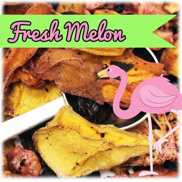 Fresh Melón - Infusión fría-706