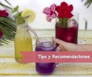 tips y recomendaciones para preparar té frío