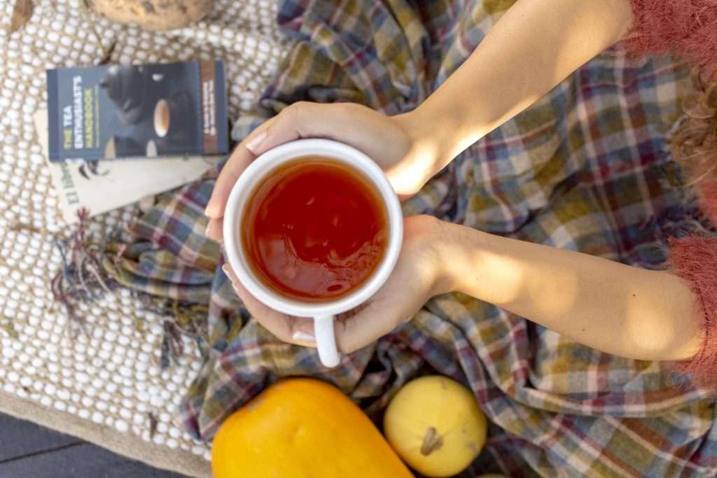 cómo iniciarse en el té