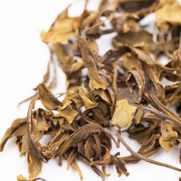 paimutan nilgiri té blanco